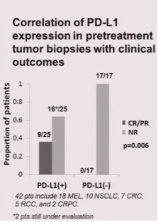 bms-936558 - pdl1 expression